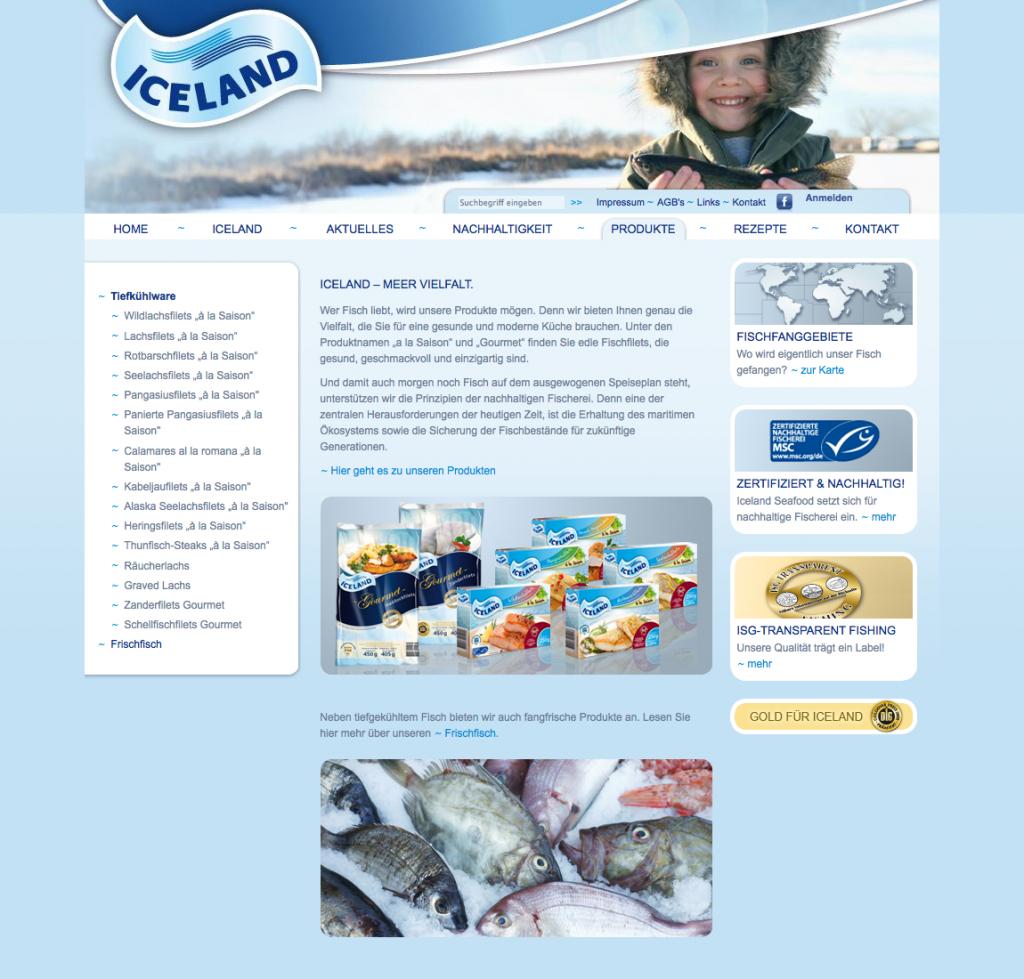 projekt-iceland-2