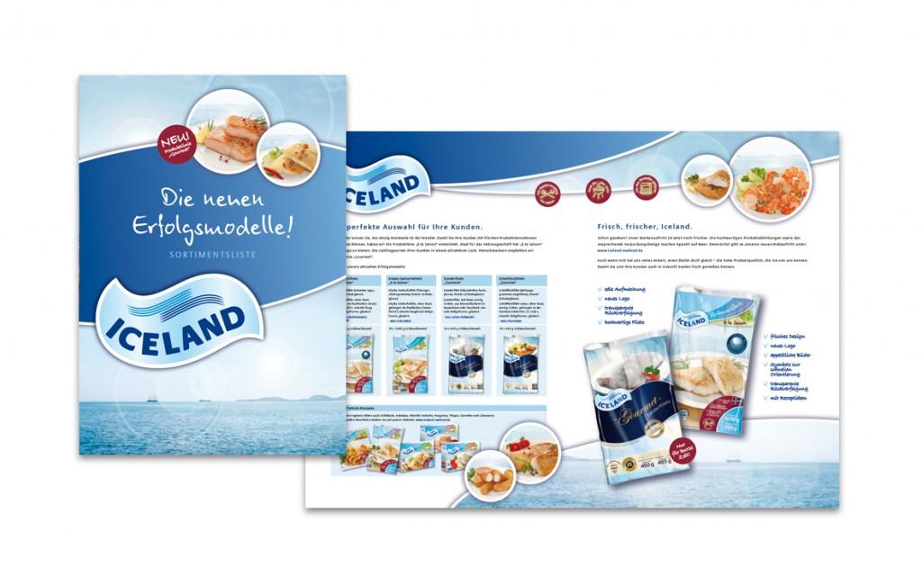 projekt-iceland-8